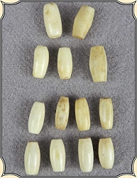 Beads - Oval Antiqued Bone