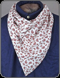Bandana - Paisley Cotton Triangle Bandana