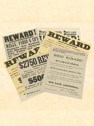 Wells Fargo Reward Posters - pkg 10