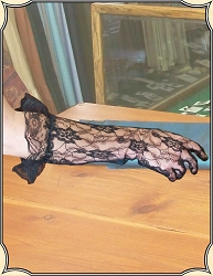 Gloves - Lace Evening Gloves
