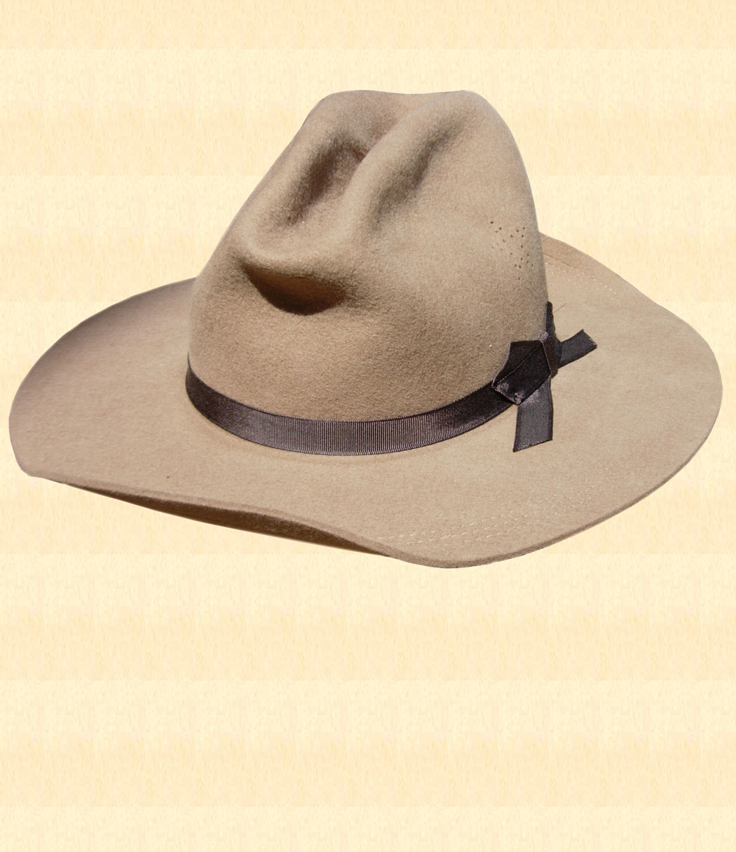 The Last Campaign - Hat Style