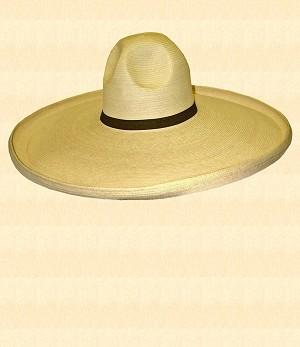 bf15dfbfab24f thumbnail.asp file assets images productimages mens hats straws charro charro1.jpg maxx 300 maxy 0